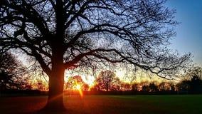 Coucher du soleil beau et de colorfull photographie stock libre de droits