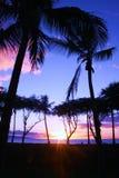 Coucher du soleil bleu et rose de Maui image stock