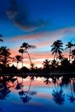 Coucher du soleil bleu et rouge au-dessus de plage de mer avec des paumes Photos stock