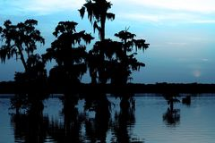 Coucher du soleil bleu frais dans le lac Martin Louisiana image stock