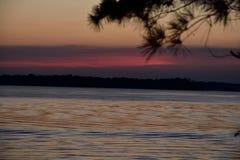 Coucher du soleil bleu rose de lac par la silhouette d'arbres Images libres de droits