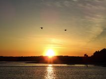 Coucher du soleil brillant au-dessus de rivière de Halifax dans la côte la Floride de paume Photographie stock libre de droits