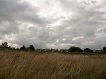 Coucher du soleil britannique au-dessus de champ d'herbe avec les cieux et les maisons et les arbres déprimés Photographie stock libre de droits
