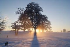 Coucher du soleil brumeux Image stock