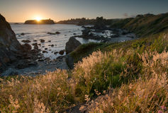 Coucher du soleil côtier Photo stock