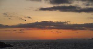 Coucher du soleil côtier orange-foncé avec les nuages et la mer Photos libres de droits