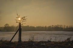 Coucher du soleil chaud au-dessus d'assèche en hiver Image stock