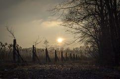 Coucher du soleil chaud au-dessus d'assèche et de route en hiver Images libres de droits