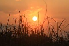 Coucher du soleil chaud de montagnes avec le ciel orange Photo stock