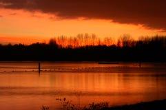 Coucher du soleil chez Delftse Hout Photo stock