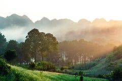 Coucher du soleil chez Moc Chau, Vietnam Image libre de droits