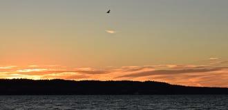 Coucher du soleil chez Mukilteo, Washington11 Photo libre de droits