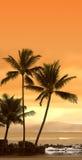 Coucher du soleil chez Oahu, Hawaï Image stock