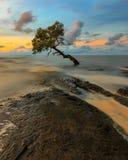 Coucher du soleil chez Pantai Kuri Caddi Image stock
