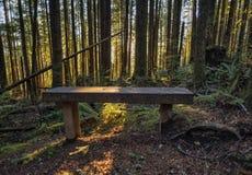 Coucher du soleil chez Wallace Falls State Park Photo stock