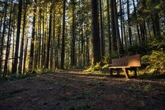 Coucher du soleil chez Wallace Falls State Park Photographie stock libre de droits