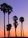 Coucher du soleil coloré Photographie stock