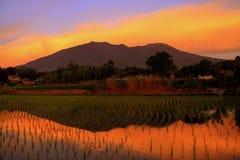 Coucher du soleil coloré Photo libre de droits