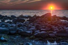 Coucher du soleil coloré au-dessus de mer baltique Image libre de droits