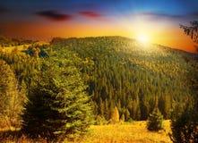 Coucher du soleil coloré aux montagnes de forêts Photos stock
