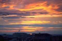 Coucher du soleil coloré et oiseau noir volant au-dessus d'une ville Photos libres de droits