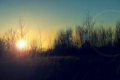 Coucher du soleil délicieux d'automne au-dessus de l'horizon photos libres de droits