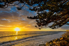 Coucher du soleil d'or à la plage Photo libre de droits