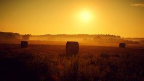 Coucher du soleil d'été Photo stock