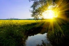 Coucher du soleil d'été photos stock