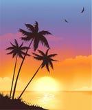 coucher du soleil d'été illustration de vecteur