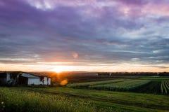 Coucher du soleil d'été au-dessus de ferme et de cabane humbles pendant la récolte maximale Photos stock