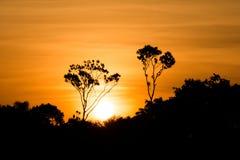 Coucher du soleil d'Amazone Photos stock