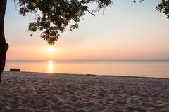 Coucher du soleil d'Amazone Photo stock