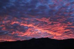 Coucher du soleil d'or au-dessus des montagnes de Catalina dans Tucson, Arizona Photographie stock