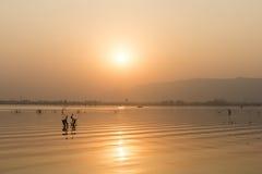 Coucher du soleil d'or au lac ana Sagar dans Ajmer, Inde photos stock