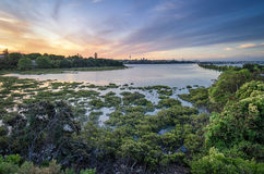 Coucher du soleil d'Auckland Image libre de droits