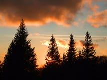 coucher du soleil d'automne photo stock