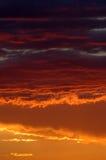Coucher du soleil d'or dans le désert namibien Image libre de droits