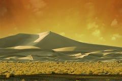 Coucher du soleil d'or de ~ de dunes de sable Image libre de droits