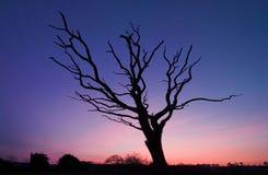 Coucher du soleil d'Egloskerry Images stock