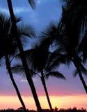 Coucher du soleil d'Hawaï Image libre de droits