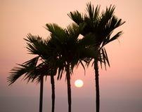 Coucher du soleil d'Hawaï Images stock