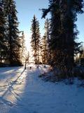 Coucher du soleil d'hiver au lac Images libres de droits