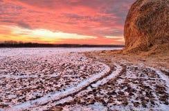 Coucher du soleil d'hiver sur le champ image libre de droits