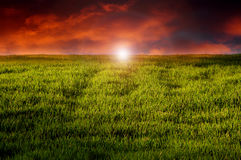 Coucher du soleil d'imagination au-dessus de pré Photos libres de droits