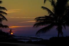 Coucher du soleil d'or Jamaïque Photographie stock