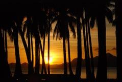 Coucher du soleil d'or sur l'île tropicale. Image stock