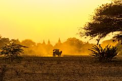 Coucher du soleil dans Bagan avec un chariot de cheval image stock