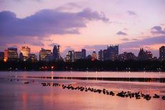 Coucher du soleil dans Central Park, New York City Photos stock
