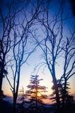 Coucher du soleil dans Himachal image libre de droits
